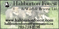 Haliburton Forest